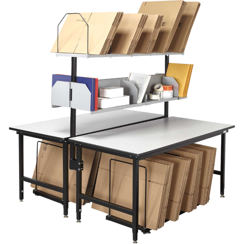 Back-to-Back Modular Packing Stations