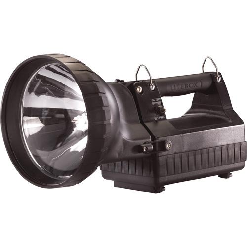 HID LiteBox® Lantern with Standard System