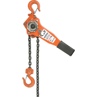 Lever Hoist LS546 | Office Plus