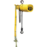Budgit® Series 6000 Air Hoists LS928 | Office Plus